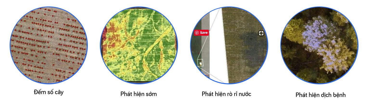 4 ứng dụng chính của drone trong nông nghiệp