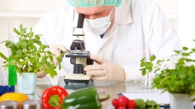 Công nghệ nano trong nông nghiệp đang nhận được rất nhiều sự quan tâm