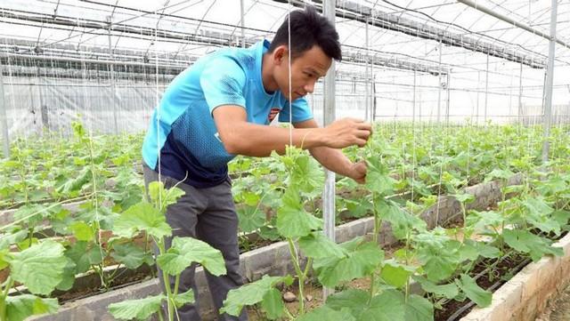 Khởi nghiệp nông nghiệp công nghệ là cơ hội hay thách thức lớn cho người trẻ?