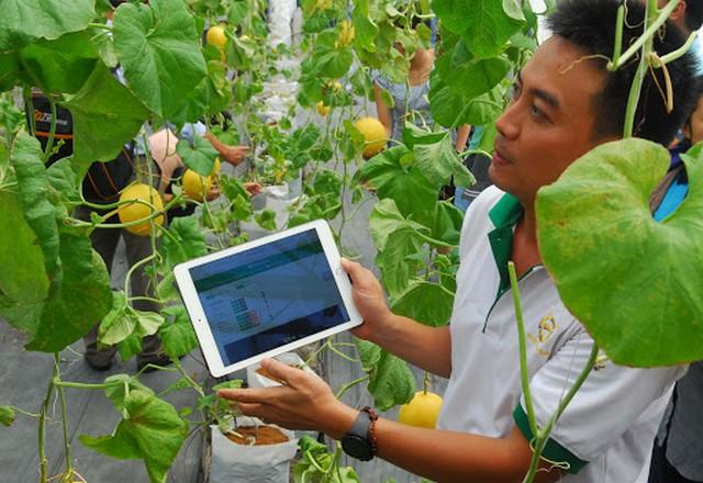 Áp dụng nông nghiệp công nghệ cao nhằm nâng cao năng suất, chất lượng sản phẩm