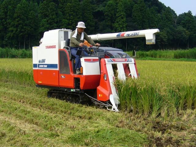 Nông nghiệp công nghệ cao Nhật Bản có gì đặc biệt?