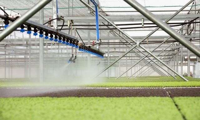 Nông nghiệp công nghệ cao mang đến rất nhiều lợi ích cho con người
