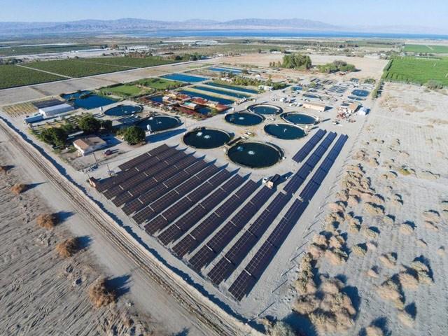 Mô hình công nghệ nuôi cá trên sa mạc mang đến thành công lớn tại Israel