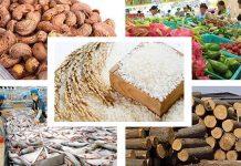 Thị trường EU và cơ hội cho nông sản Việt Nam