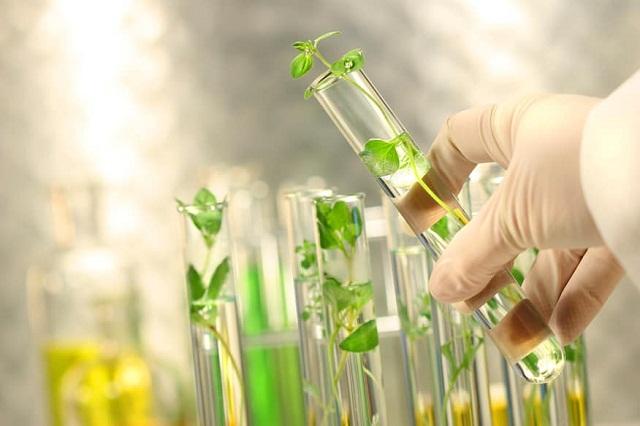 Công nghệ sinh học trong nuôi trồng thủy sản