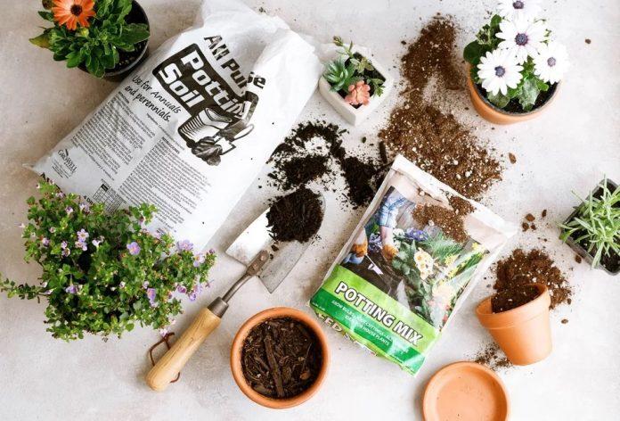 Sự khác biệt giữa đất trồng trong chậu và hỗn hợp giá thể trồng cây