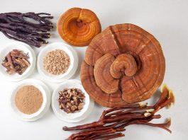 công dụng nấm linh chi