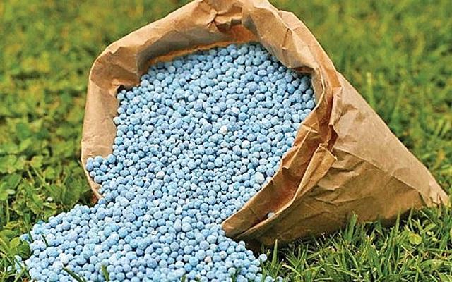 Phân bón được hiểu đơn giản là nguồn cung cấp dưỡng chất thiết yếu cho cây trồng