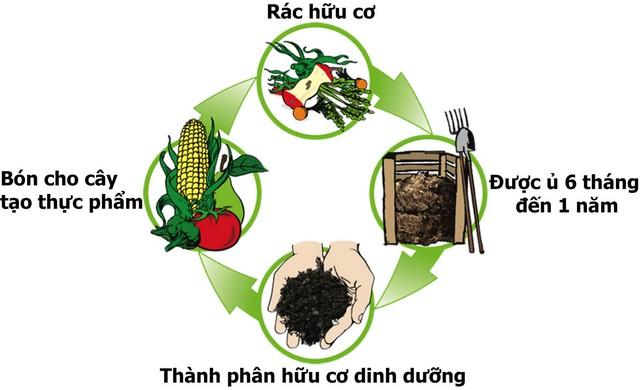 Quy trình ủ phân hữu cơ thường kéo dài từ 6 tháng đến 1 năm