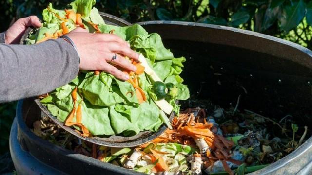 Nguyên liệu chính để ủ phân xanh là các loại rau củ quả thừa còn tươi