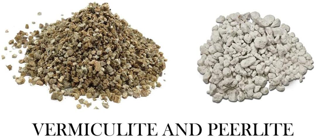 Giá thể trồng cây: Đá Perlite và Vơ mi