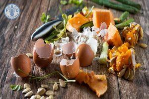 Phân hữu cơ từ vỏ trứng