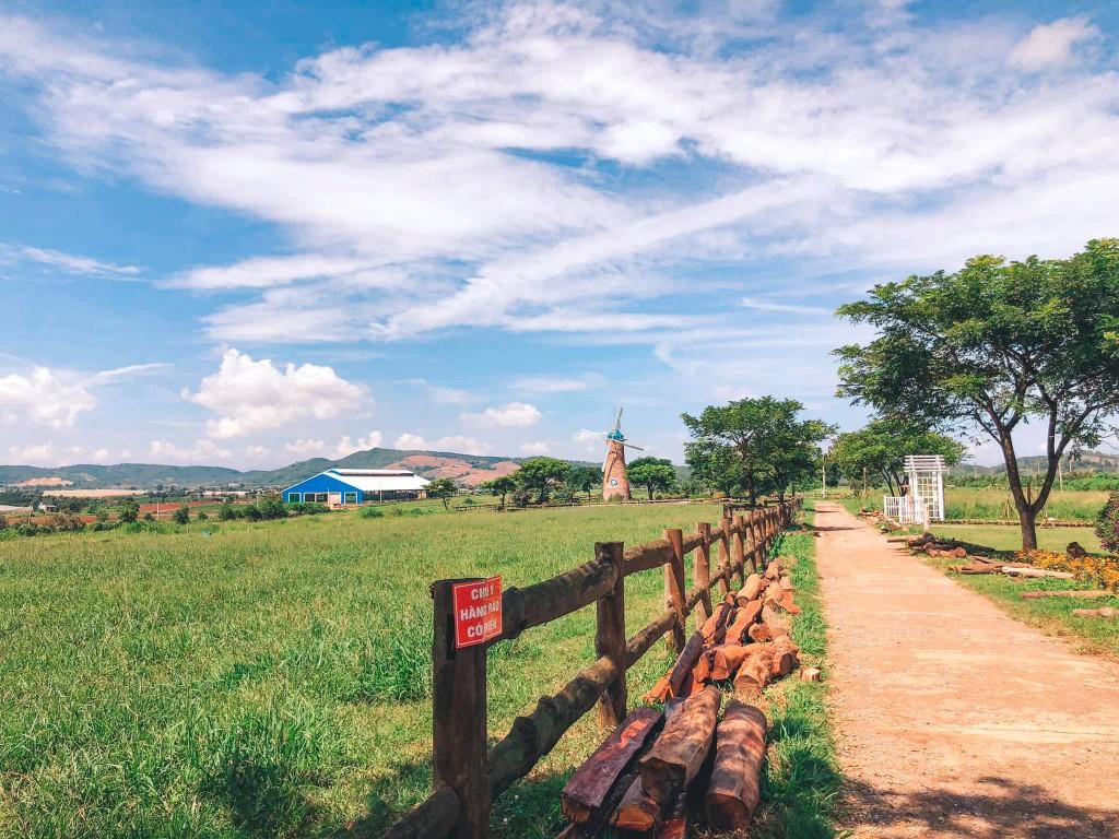 trang trại đẹp và thơ mộng