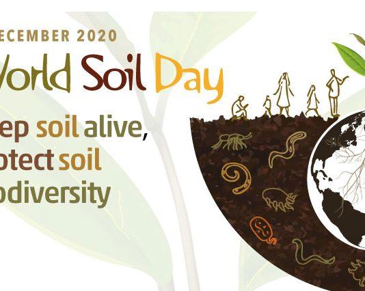 Ngày tài nguyên đất thế giới 2020