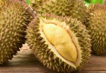 Cách chăm sóc sầu riêng sau thu hoạch
