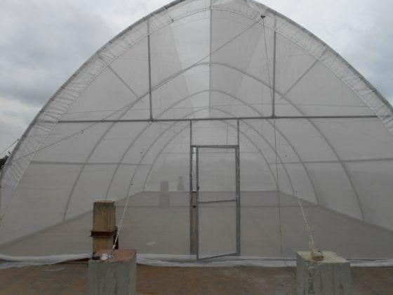 Nhà mính mini STK tropical 1