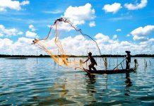 Những sai lầm trong nuôi trồng thủy sản